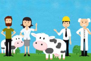 Irish Dairy Board